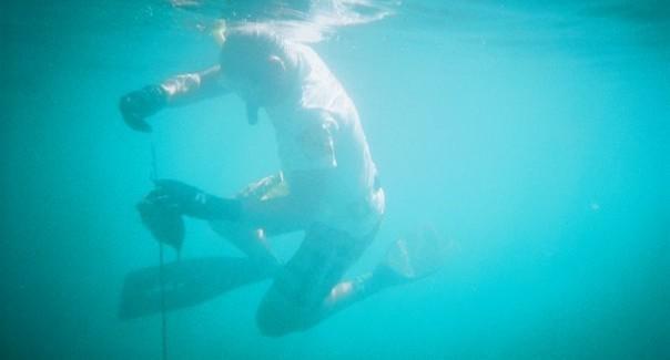 INDONESIA SPEARFISHING CHARTER » We live Spearfishing