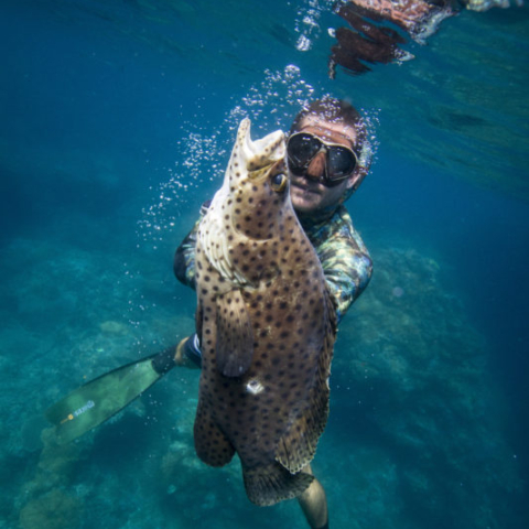 Bali Spearfishing Brodie moss young bloods barramundi cod