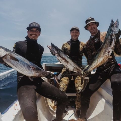 Bali spearfishing spanish mackerel