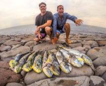 Bali Spearfishing mahi mahi
