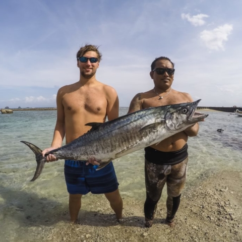 bali spearfishing, spanish mackerel