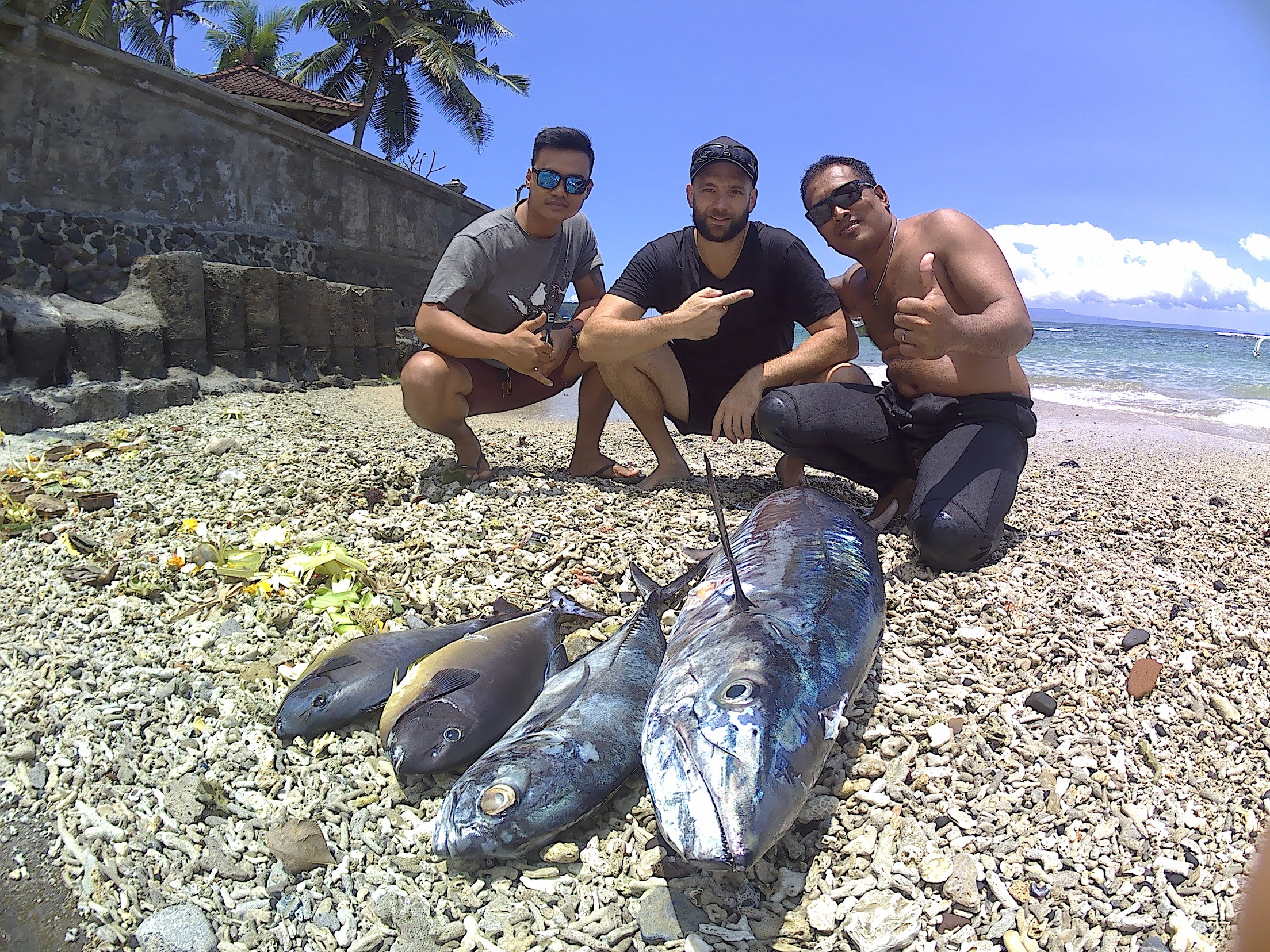 bali spearfishing, bigeye trevally, spanish mackerel