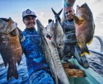 Bali Spearfishing Midnight Snapper, Barracuda, Giant Trevally and Maori Seaperch