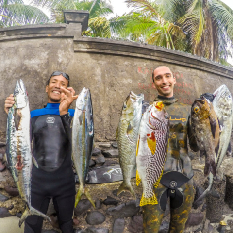 Bali Spearfishing : Spanish Mackerel, Green Jobfish, Midnight Snapper , Bigeye Trevally