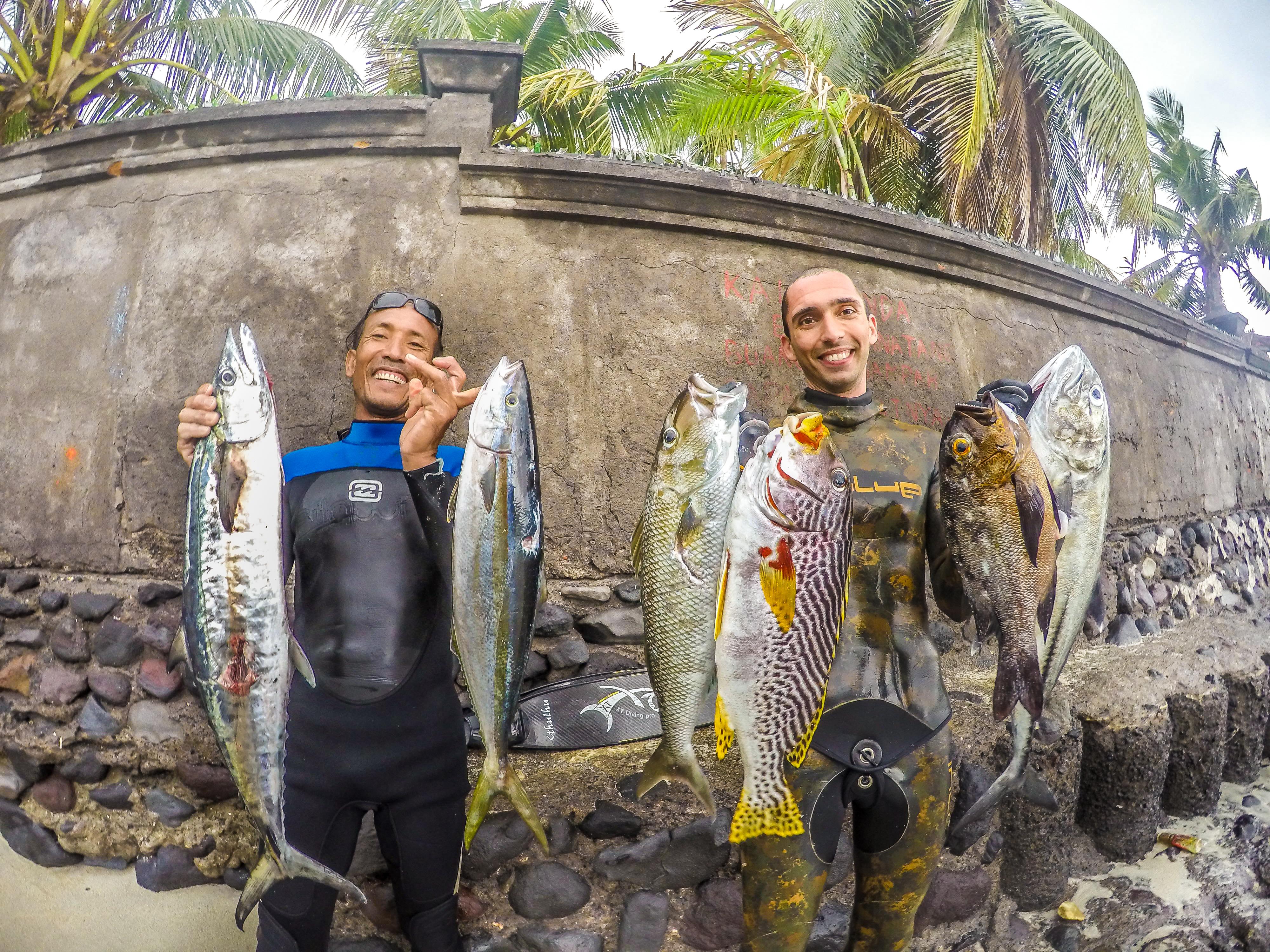 Bali Spearfishing : Spanish Mackerel, Green Jobfish, Midnight Snapper , Bigeye Trevally