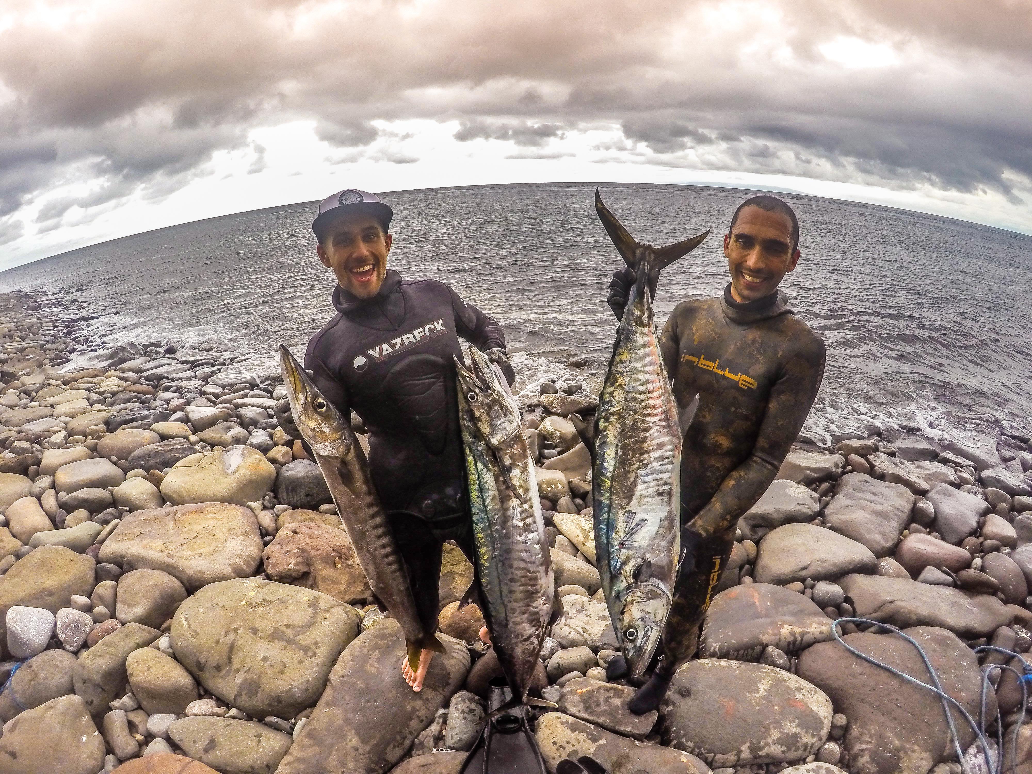 Bali Spearfishing Spanish Mackerel 20 KG