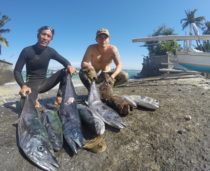 Bali Spearfishing, Spanish mackerel, Flowery cod, and Bigeye Trevally