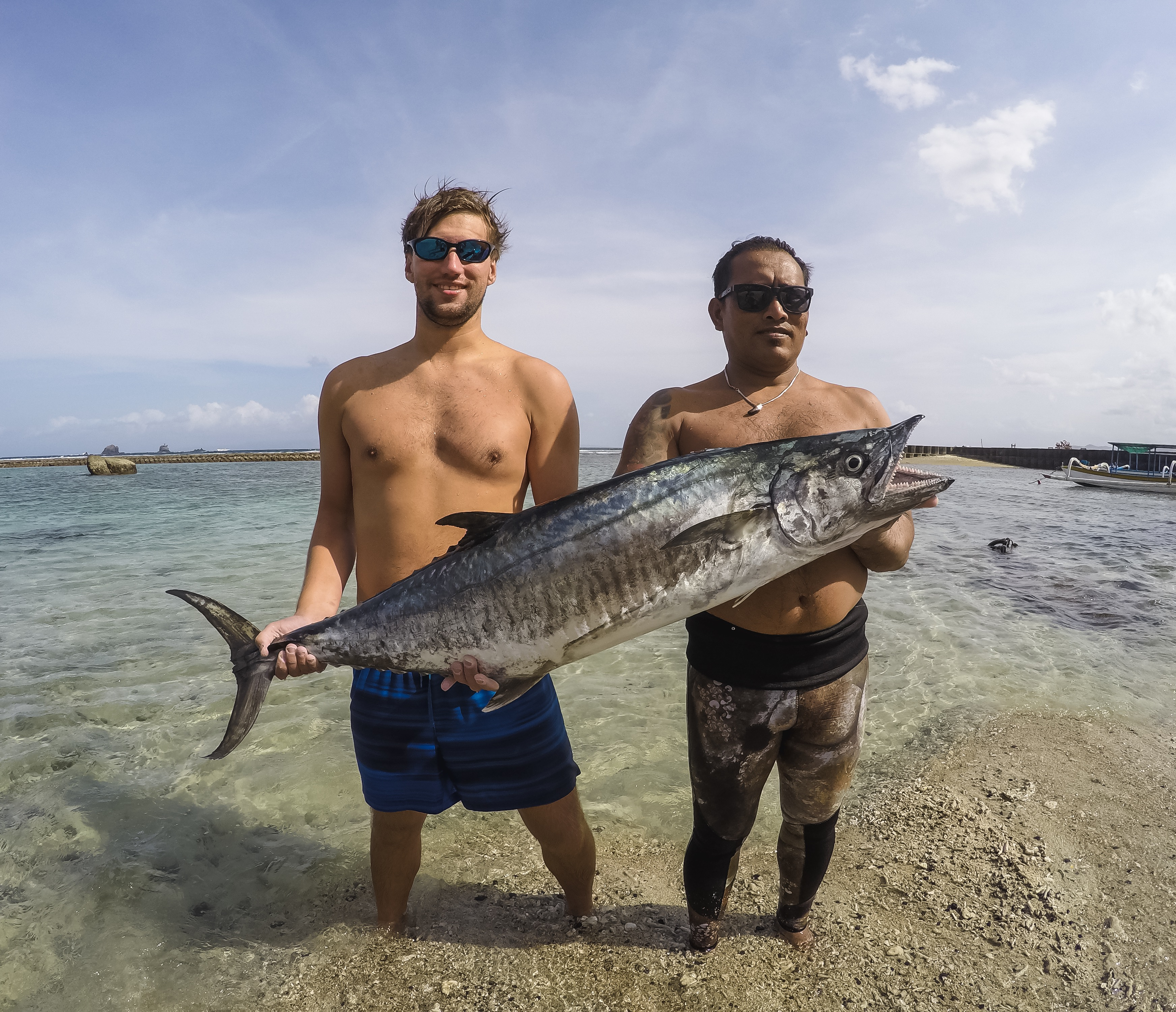 bali spearfishing, spanish mackerel