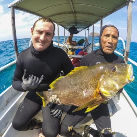 bali spearfishing, maori seaperch