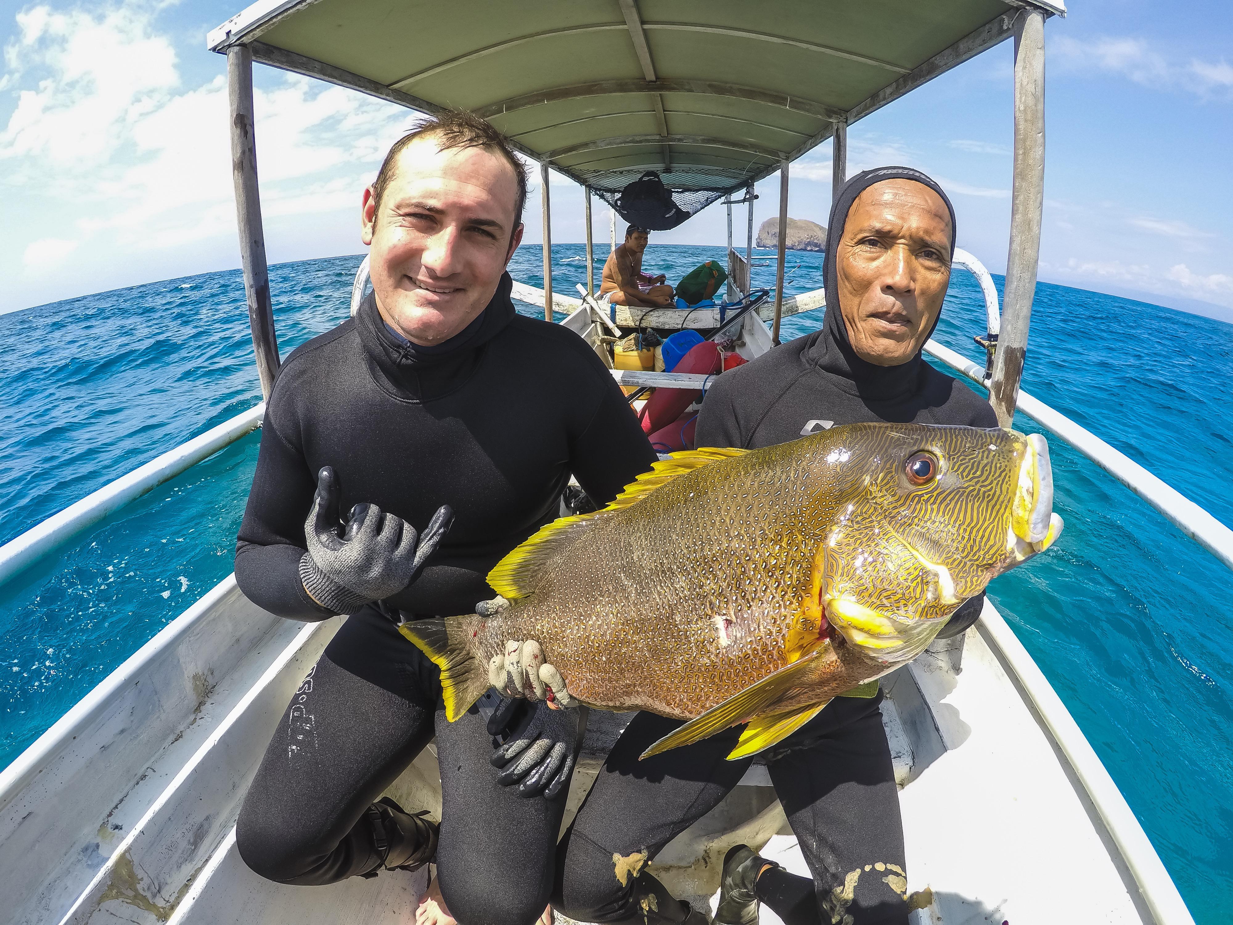 bali spearfishing, maori seaperch