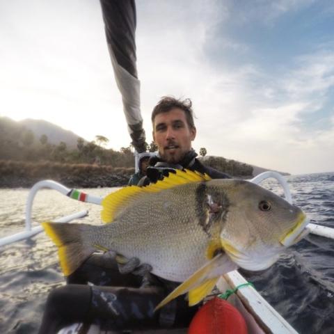 Bali Spearfishing Maori Seaperch