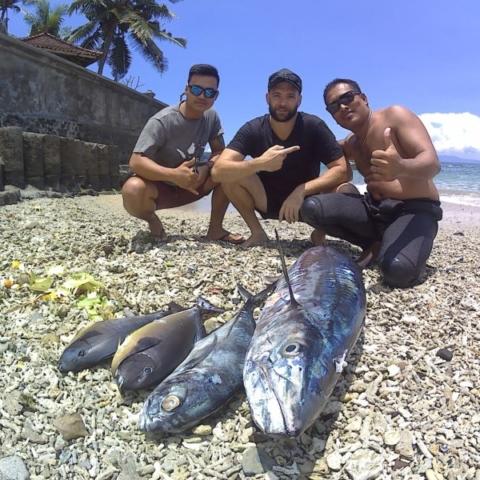 bali spearfishing, bigeye trevally, spanish mackerel