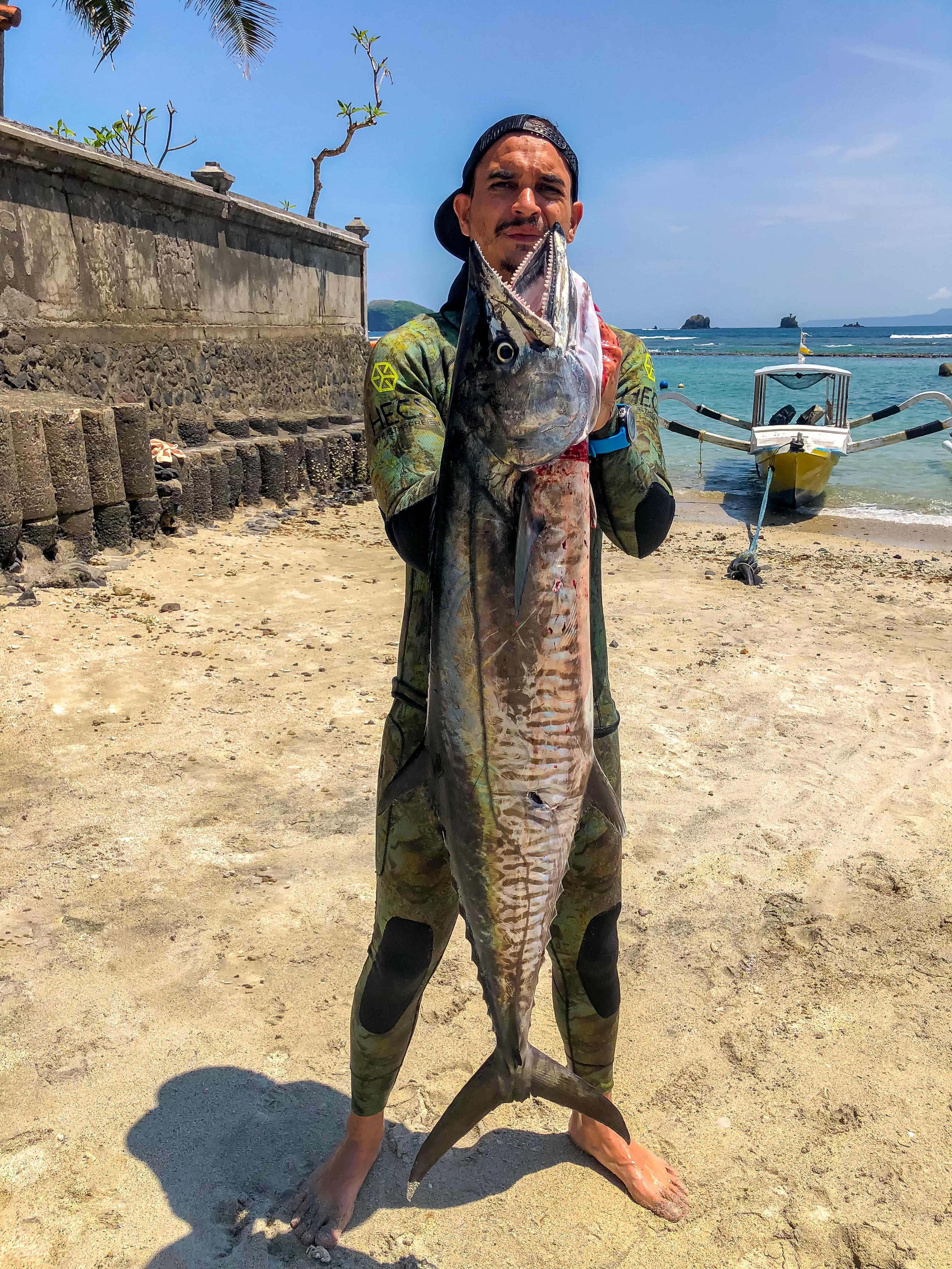 Bali Spearfishing Spanish Mackerel