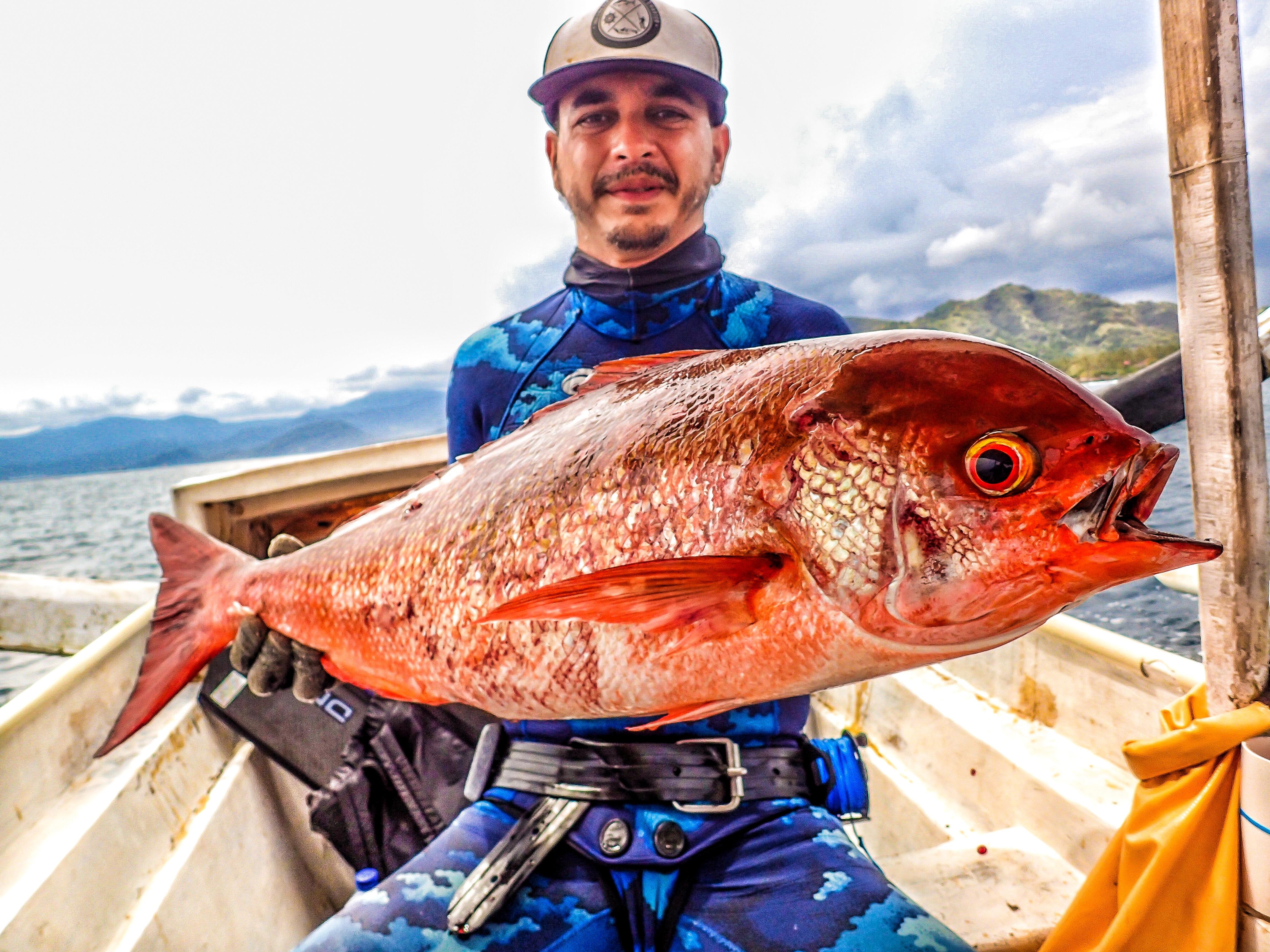 Bali Spearfishing Pinjalo Snapper