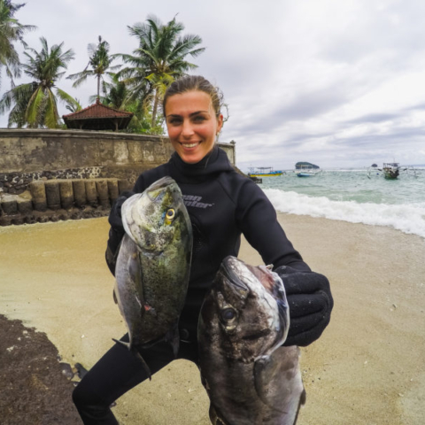 Bali Spearfishing Bluefin Trevally