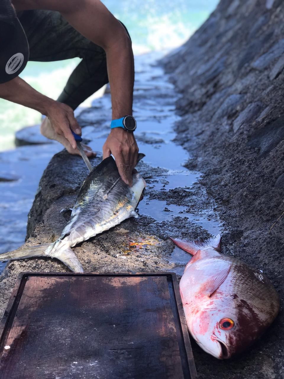 INDONESIA SPEARFISHING CHARTER » Bali Spearfishing